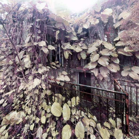 Ngong Ping 昂坪 2012-02-23
